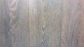 从树的地板 免版税图库摄影