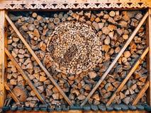 树的日志 被锯的木头 库存照片