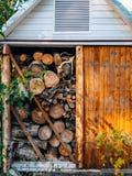 树的日志 被锯的木头 免版税库存图片