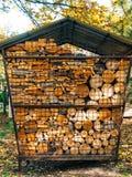 树的日志 被锯的木头 免版税库存照片