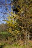 树的狩猎观测所 免版税库存图片