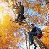 树的男孩 库存照片