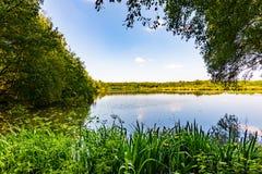 树的看法在一个晴天排行了农村lancashire的湖 图库摄影