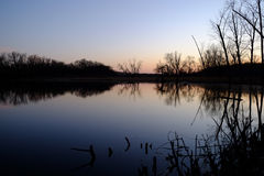 树的美好的反射在湖浇灌 库存照片