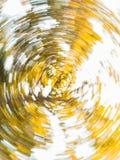 树的自转 免版税图库摄影