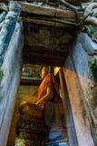 树的菩萨, Samutsongkram在泰国 库存图片