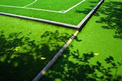 树的阴影和秋天在人为草橄榄球fi生叶 库存图片