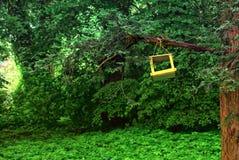 树的黄色鸟房子 库存照片