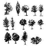 树的画的collectiondifferent类型着墨剪影例证 库存例证