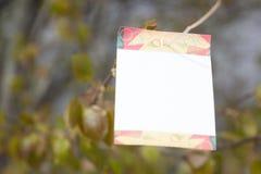 树空白 免版税库存图片