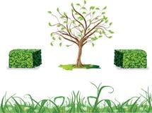 树篱、野草和树 免版税库存照片