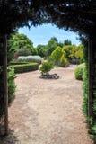 树篱迷宫出口 图库摄影