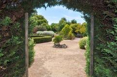 树篱迷宫:退出到庭院 库存照片