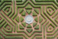 树篱迷宫 免版税图库摄影