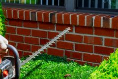 树篱饰物,工作在庭院里 有专家园艺工具的花匠在工作 库存图片