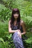 树精森林 库存图片