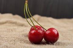 树红色樱桃水平的照片与一起在黄麻的一个绿色分支在桌上的水下落的 选择聚焦 图库摄影