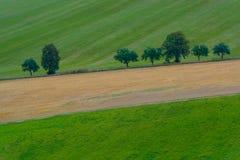 树线在二面对切的领域的 免版税库存图片