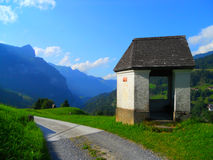树荫处在阿尔卑斯 免版税图库摄影