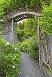 树荫处庭院 库存照片
