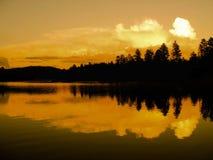 树荫橙色,黑,白色 图库摄影