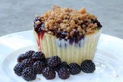 黑树莓杯形蛋糕 免版税图库摄影