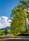 树行沿路的对山 免版税库存照片