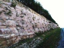 树被冠上的岩石墙壁 库存图片
