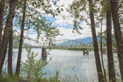 树被构筑的大漩涡桥梁 免版税库存照片