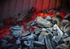 树被烧焦的微粒  库存照片