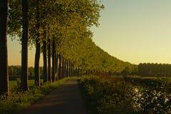 树道路和车道沿运河` de Moer `的在晚上光,反射在水中 免版税库存图片
