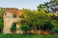 树长满的老被破坏放弃了豪宅 图库摄影