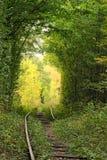 树隧道掩藏老铁路线 爱-天生被创造的美妙的地方隧道  库存照片