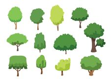树集合汇集被隔绝的和绿色树 库存例证