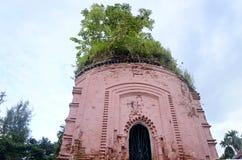 树顶面寺庙 免版税图库摄影