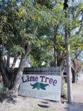 椴树食物小店的老标志在基韦斯特岛, FL 免版税库存照片