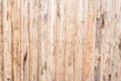 树,墙壁的纹理,地板由自然木头制成,委员会有品质差处理,许多纤维 免版税图库摄影