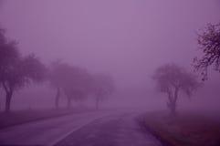 树,线,紫色,天空,湿,秋天 库存图片