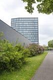 树围拢的现代玻璃大厦 免版税图库摄影