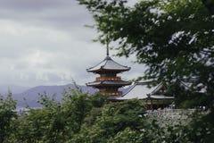 树围拢的红色寺庙 免版税库存图片