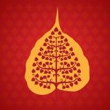 树bodhi叶子 库存照片