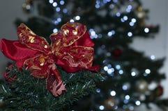 栓在树的红色与空间写圣诞节消息 免版税库存照片