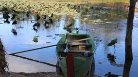 栓对岸在湖的小船 股票录像