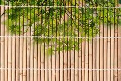 栓干竹子偷偷靠近在日本式的样式 库存图片