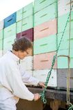 栓绳索的蜂农到被装载的蜂窝条板箱  库存照片