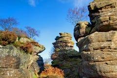 栖于brimham的岩石 免版税库存照片