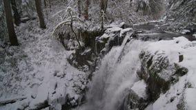 栖息在树围拢的一多雪waterfal上 影视素材