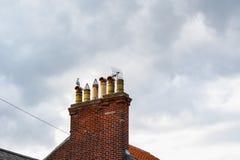 栖息在烟囱的海鸥反对不祥的天空在索思沃尔德 免版税库存图片
