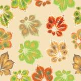 栗子叶子 无缝的模式 在明亮的背景的构成在温暖的口气 为纺织品,挂毯,玻璃器皿, c设计 库存照片