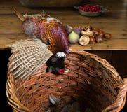 栗子和狂放的野鸡 免版税库存图片
